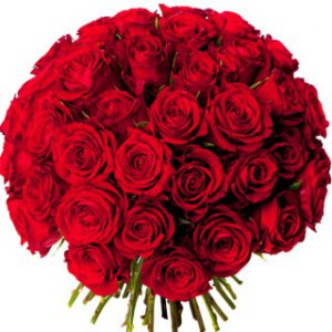 bouquet-50-roses-rouges