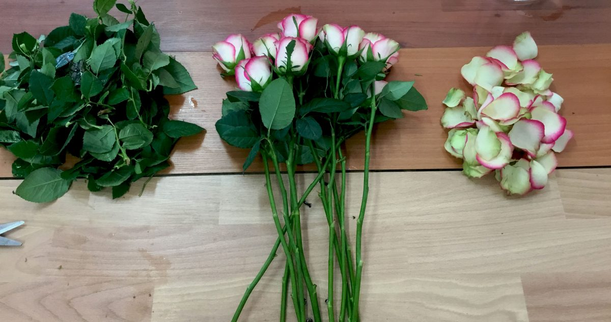 Tuto : Comment conserver mes roses ?